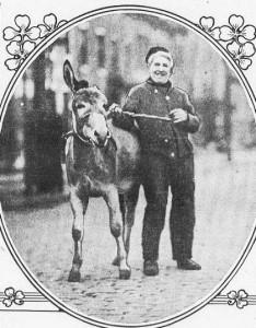 3-17-1915-McTammeny's Donkey