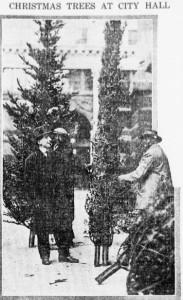 Christmas Trees At City Hall
